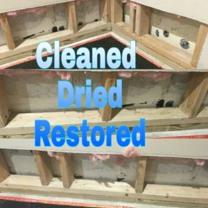 Mold Remediation Magic Touch Carpet Cleaning Amp Water